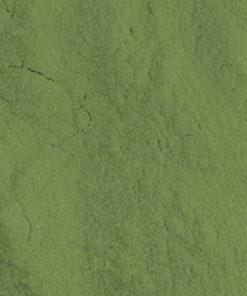 PIGMENTO VERDE color acryl groen mistero milano